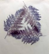 Bracken, monoprint
